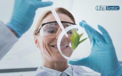 LifeBiotic's Botanical Formula Gives New Hope for Bladder Cancer Patients